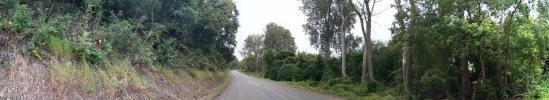 River Road I